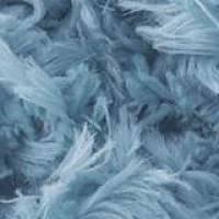 ALIZE Puffy Fur 6106